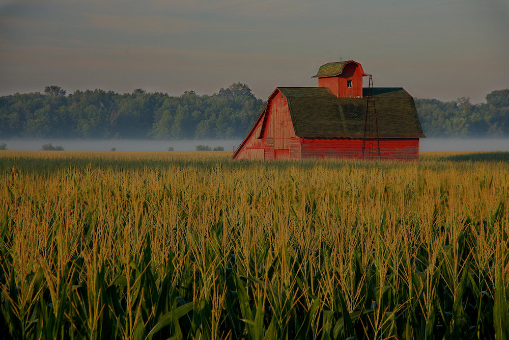 farm and crop insurance Pendleton IN